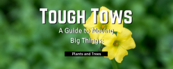 Tough Tows – Plants and Trees