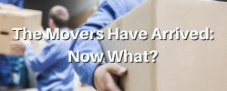 The Movers Have Arrived: Now What Should You Do?