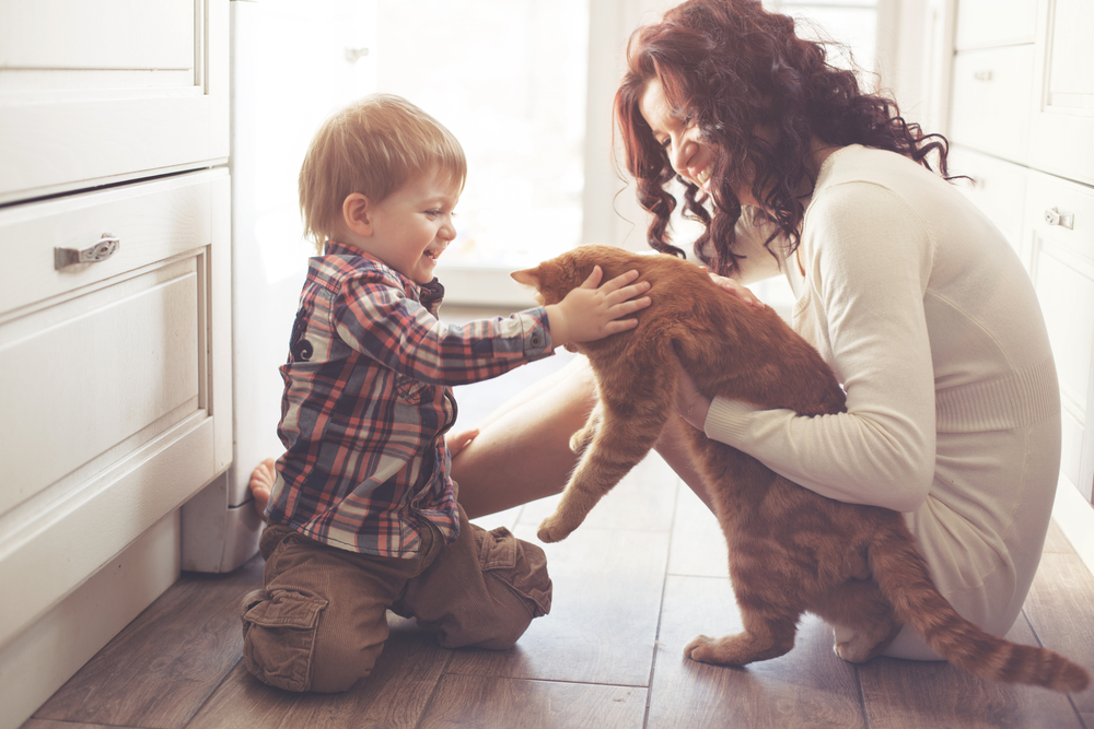 Mom and son playing with cat